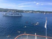 Sail Croatia review. Category: Travel